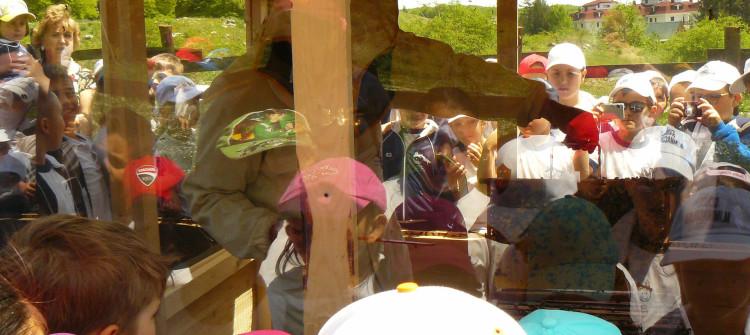 progetto scuola la mieleria nel bosco livata subiaco