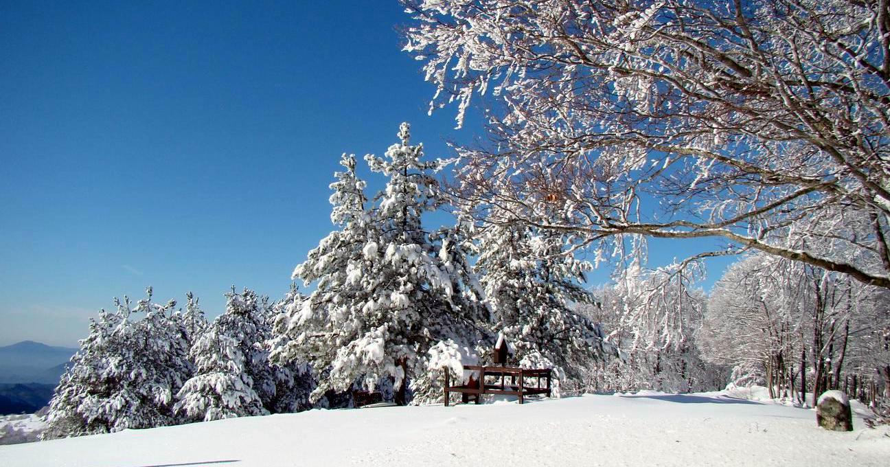 Inverno Livata Mieleria