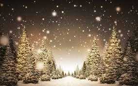 Forest Christmas Mieleria nel Bosco